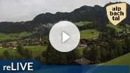 Alpbach Webcam Feilmoos