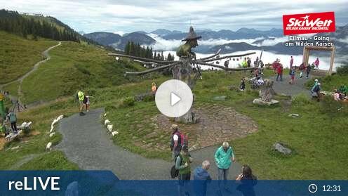 Webcam Skigebiet Ellmau Harkaiserbahn - Tirol