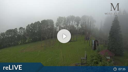 Webcam Hotel Moselebauer Bad St. Leonhard