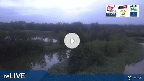 Webcam De Wijers